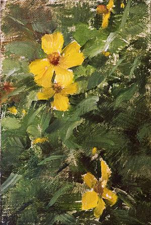 Mexican Marigold Painting Seamus Berkeley