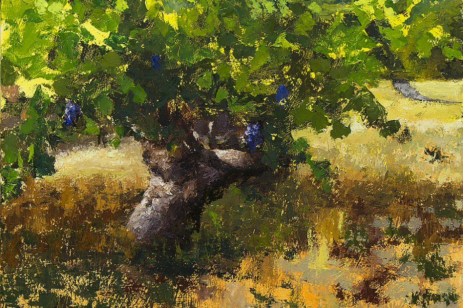 Sonoma Vineyard Progress 01 Painting Seamus Berkeley