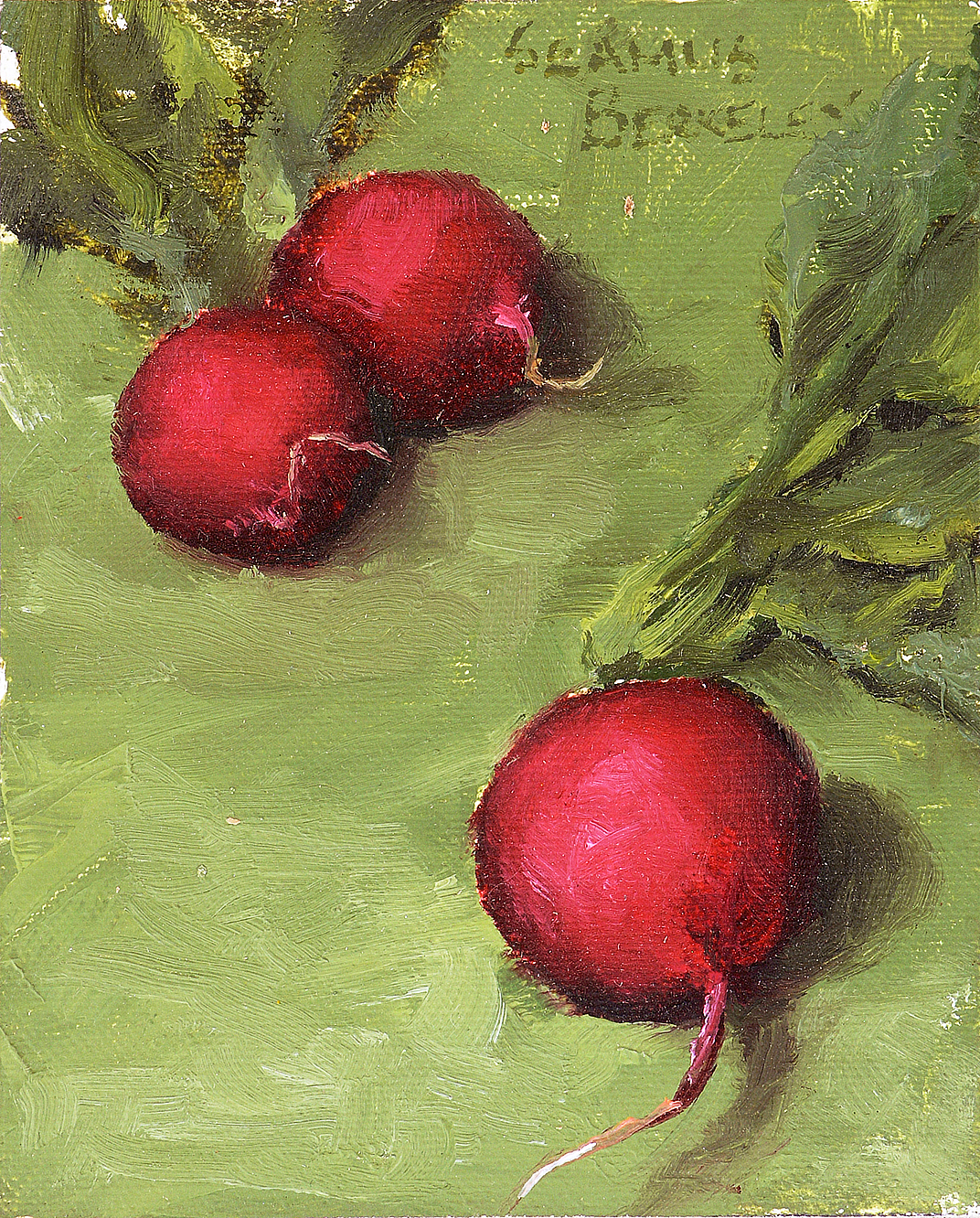 Three Radishes Painting Seamus Berkeley
